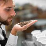 Come si diventa sommelier del caffè