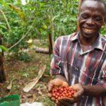 Etiopia: produzione in crescita, ma prezzi bassi