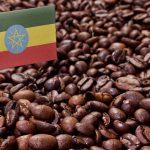 L'Etiopia non ha mai esportato tanto caffè come nell'ultimo anno